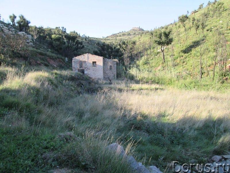 Испания. Старинная усадьба с 169 г. угодий в живописной зоне провинции Жирона - Недвижимость за рубе..., фото 5