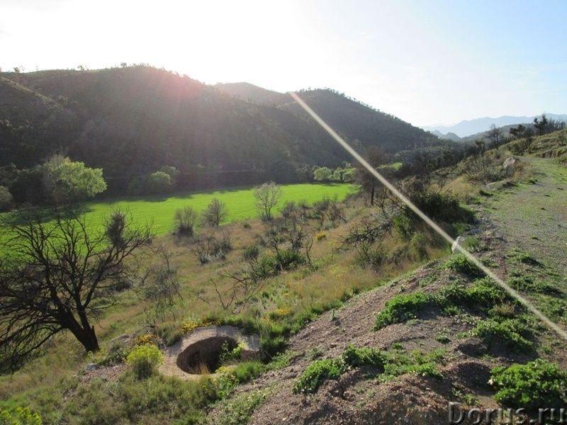 Испания. Старинная усадьба с 169 г. угодий в живописной зоне провинции Жирона - Недвижимость за рубе..., фото 7