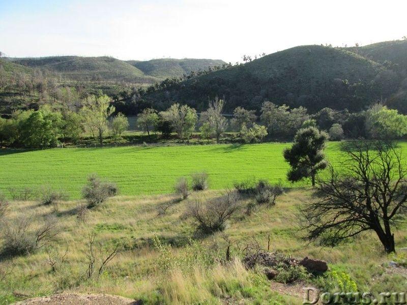 Испания. Старинная усадьба с 169 г. угодий в живописной зоне провинции Жирона - Недвижимость за рубе..., фото 8
