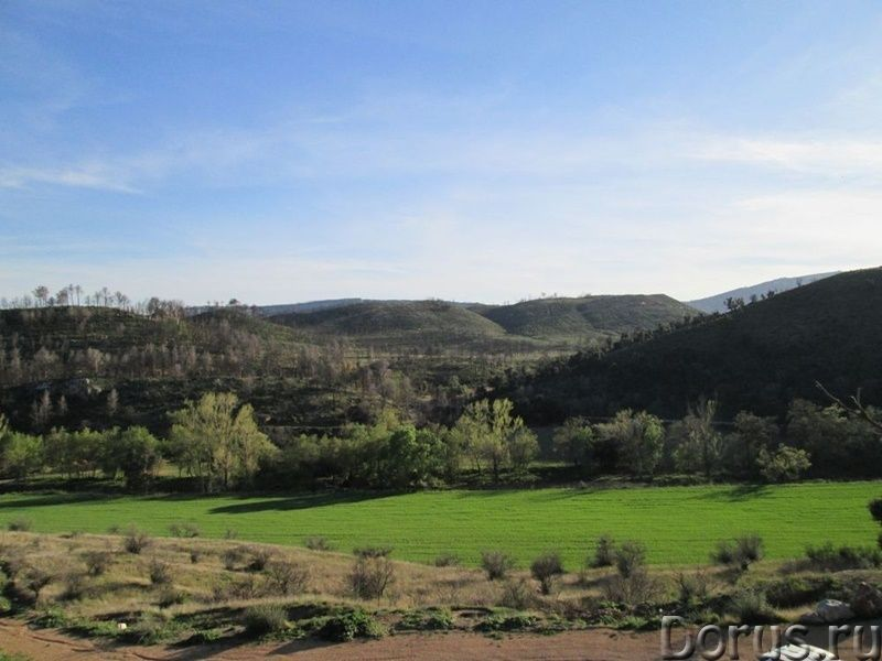 Испания. Старинная усадьба с 169 г. угодий в живописной зоне провинции Жирона - Недвижимость за рубе..., фото 9