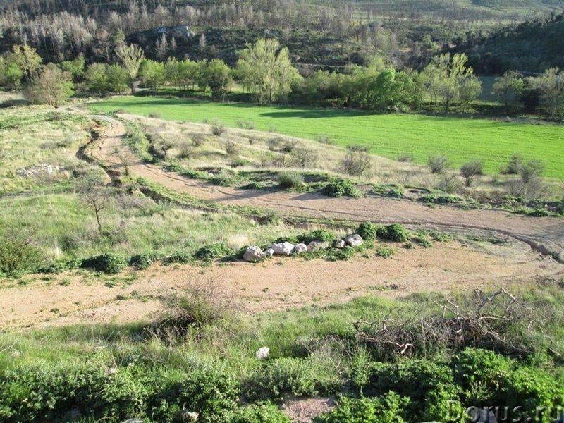 Испания. Старинная усадьба с 169 г. угодий в живописной зоне провинции Жирона - Недвижимость за рубе..., фото 10